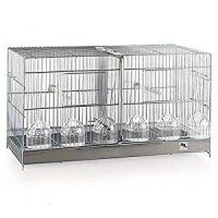 cage for canaries