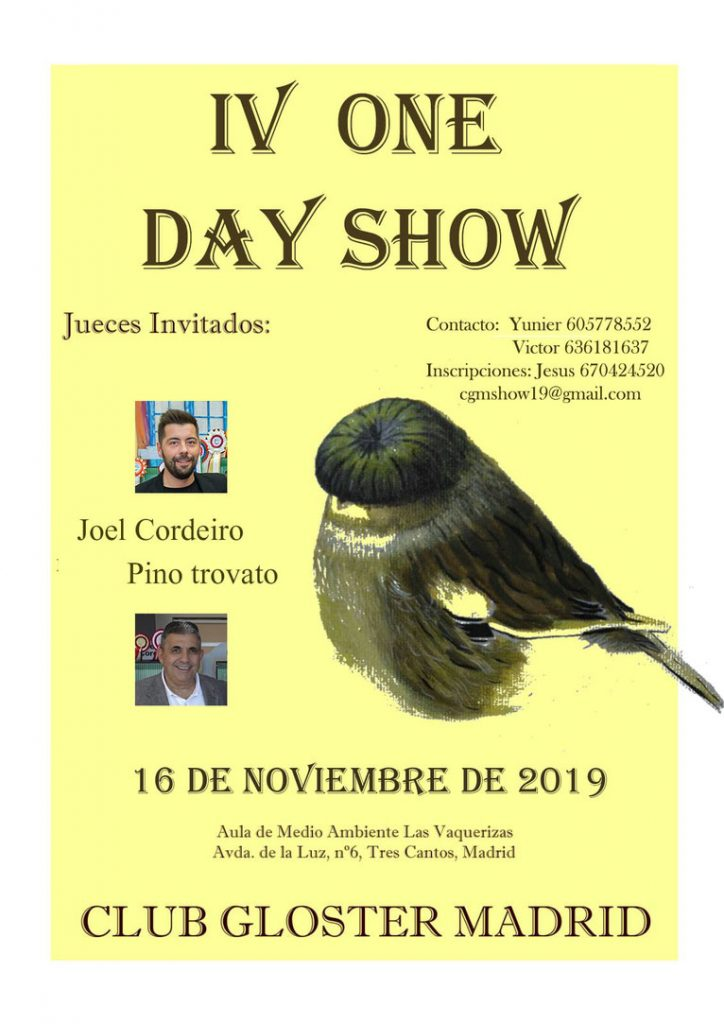 IV one day show