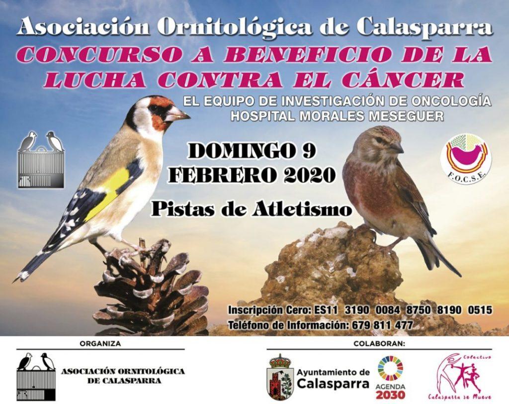 CONCURSO BENEFICO LUCHA CONTRA EL CANCER CALASPARRA