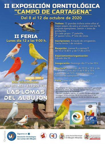 II exposición ornitológica campo de cartagena 2020